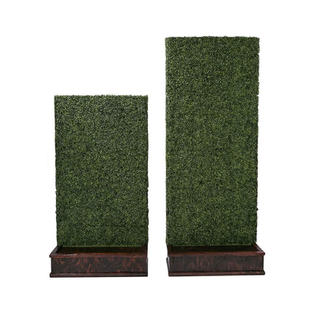 Hedge Walls