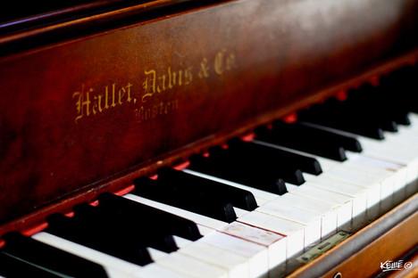 PIANO KEYS - 1