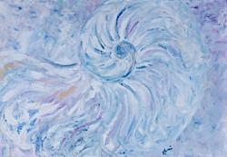 Moonshell in blue