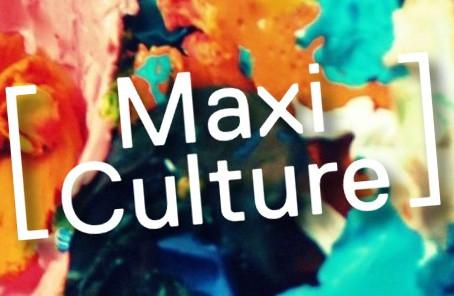 Maxi Culture: Workshop