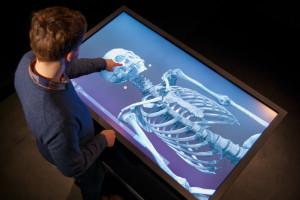 Lo schermo per la navigazione della mummia