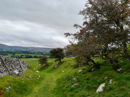 Family Adventures – Catch Up and September at Aysgarth Falls