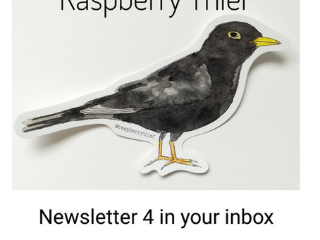 Raspberry Thief Newsletter 4