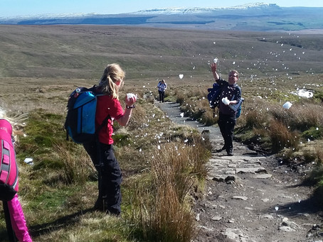 March Family Adventure – Yorkshire's highest mountain, sunshine, snowball fights and fir