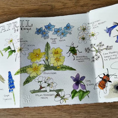 Nature Journal Page