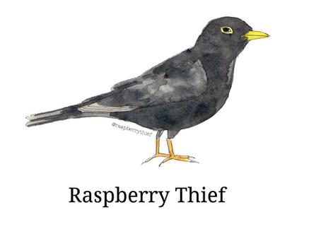 Raspberry Thief Newsletter 5