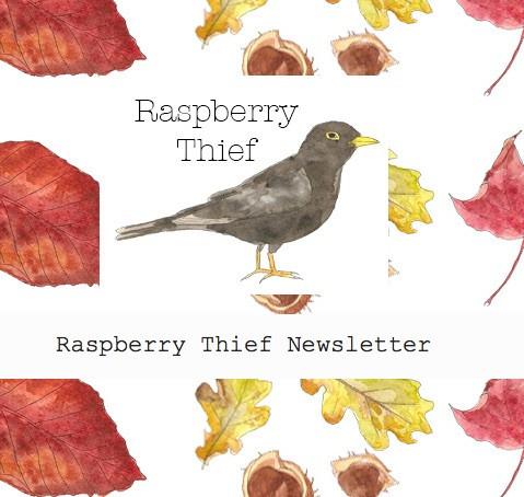 Raspberry Thief Newsletter