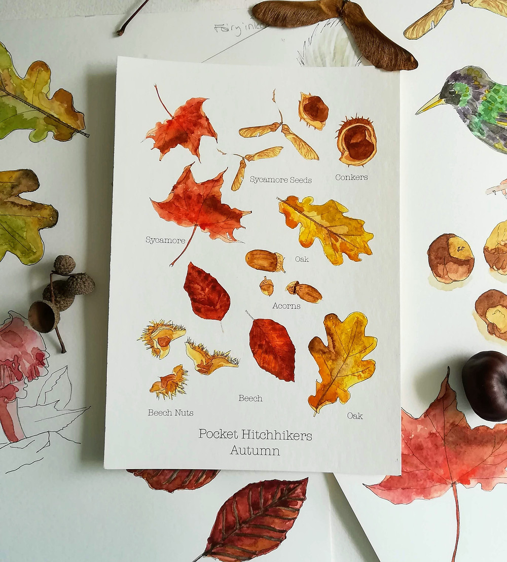 Pocket Hitchhikers - Autumn