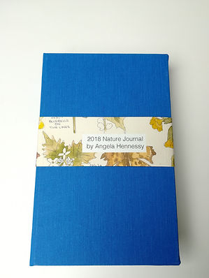 2018 Nature Journal Book