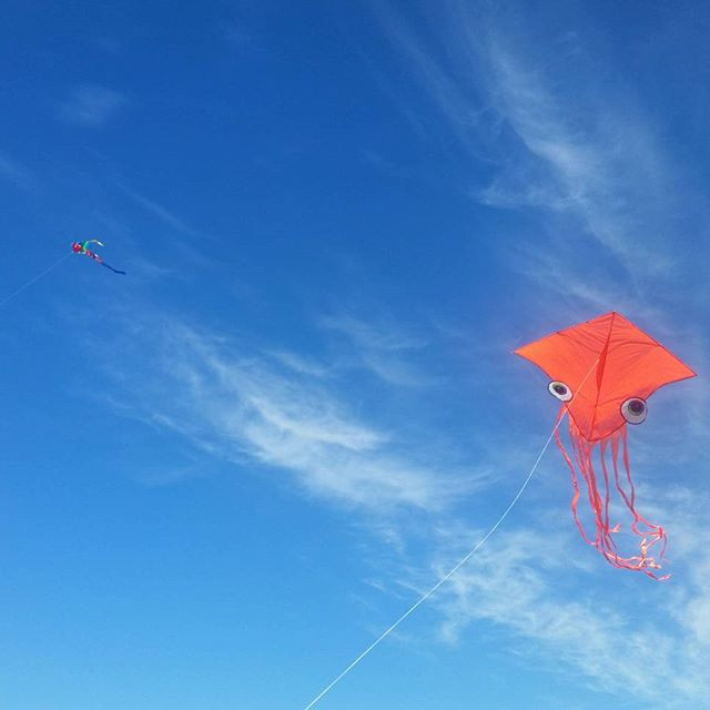 Kite Flying at the pier