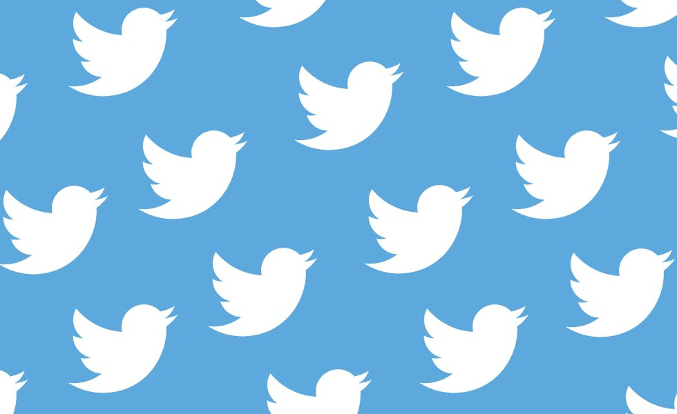 Twitter_birds.png.jpeg