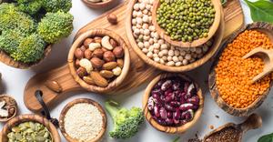 protein, eat healthy, elate wellbeing
