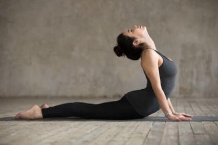 cobra in yoga  yoga for you