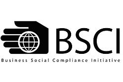 bsci sourcing inde