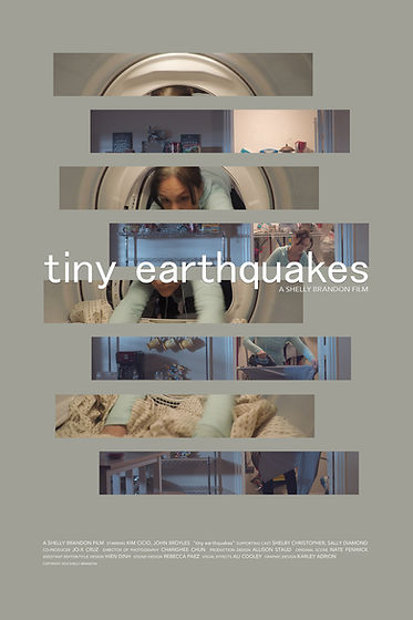 TinyEarthquakes_Poster_6x9.jpg