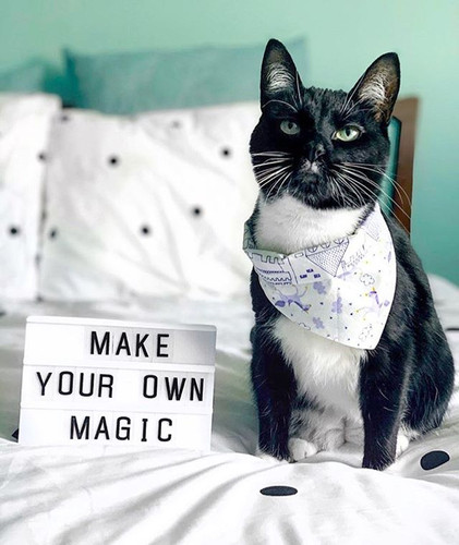 ✨ MAKE YOUR OWN MAGIC 🔮 In a time like