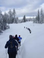 Team Building Snowshoe Tours