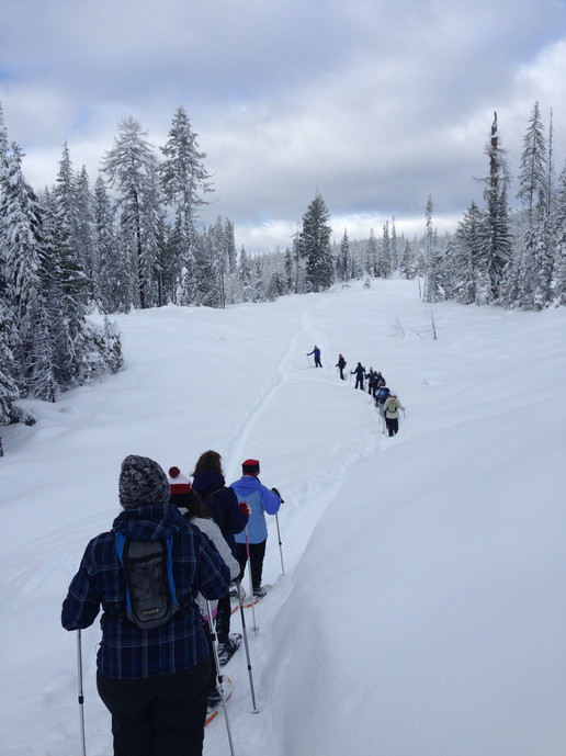 Team Building Snowshoe Tours