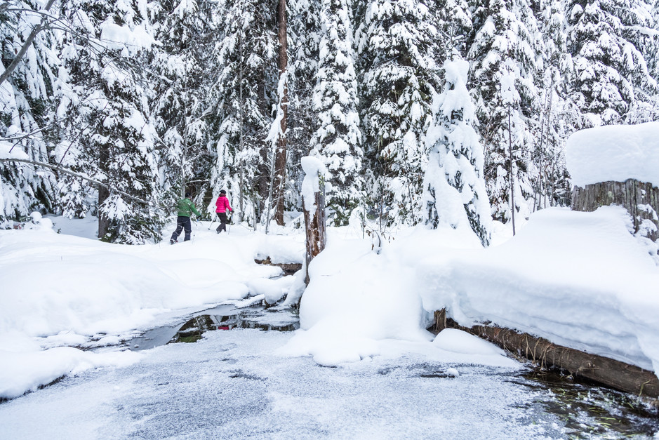 Private Snowshoe Tours