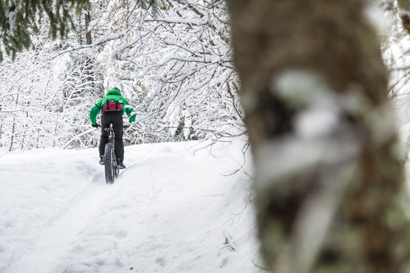 Fat Bike Tours