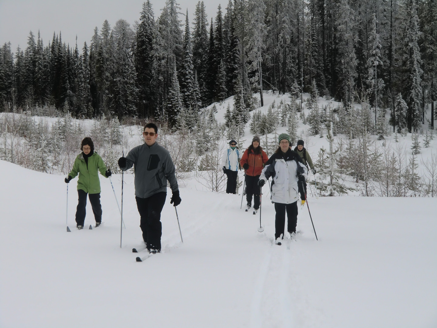 Daily Snowshoe Tours