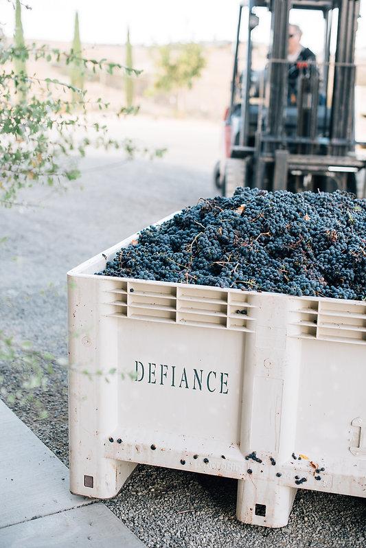 DefianceHarvest-087.jpg