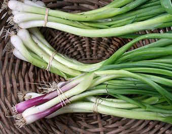 green garlic.jpg