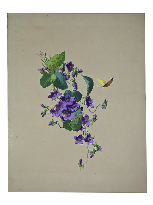FRENCH aquarellist painting of purple flowers with butterfly  Henri Adam 1890