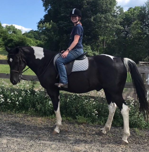 Little Brook Farm's new addition, Poco, ridden by Thea Clarkberg