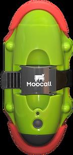 Avisador de partos Moocall