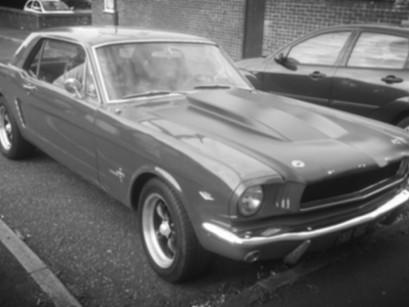 Classic car love