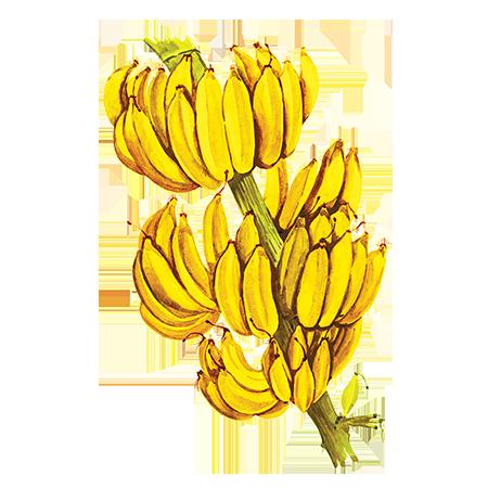 Сироп Proffsyrup Банан Желтый, 1 л