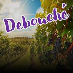 debouche box ud-1.jpg