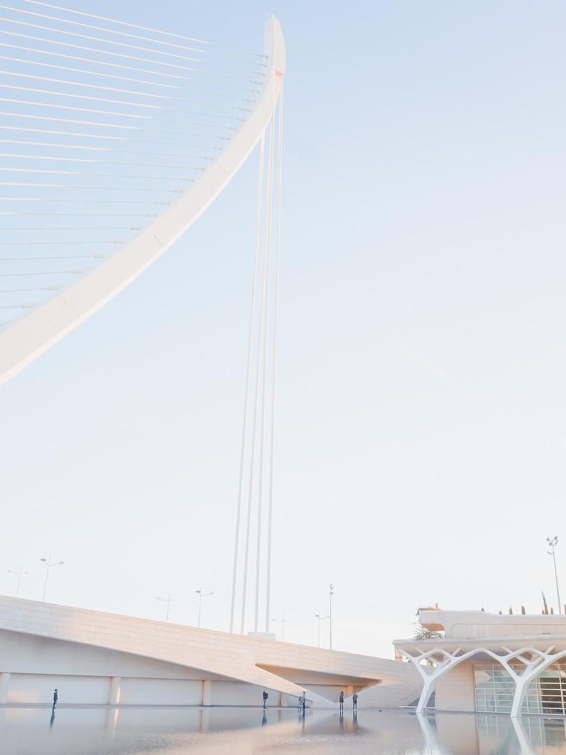 City of Arts and Sciences - Santiago Calatrava
