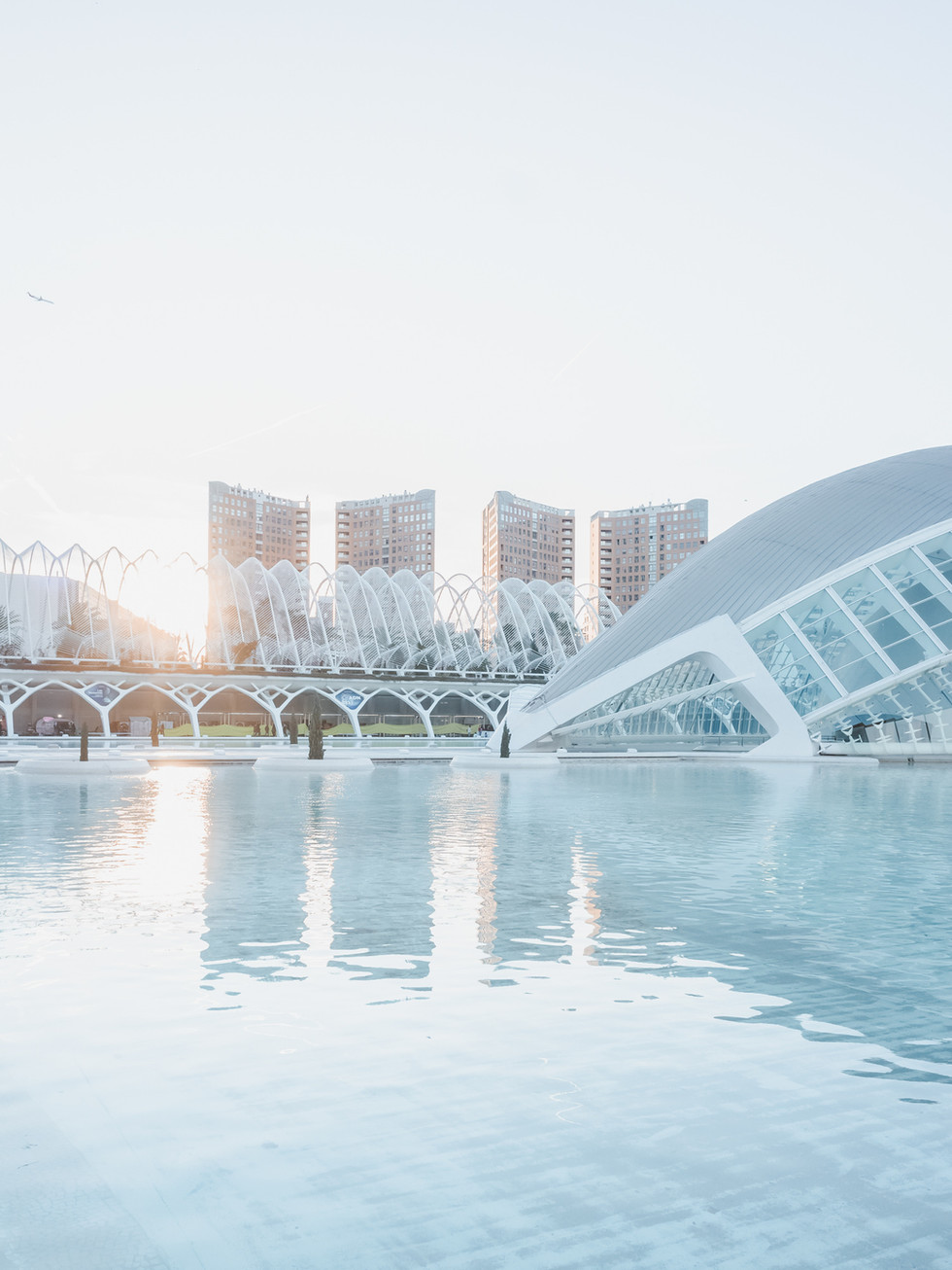 City of Arts and Sciences - Santiago Calatrava