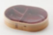 お弁当容器フタつき 楕円赤木目-1.png