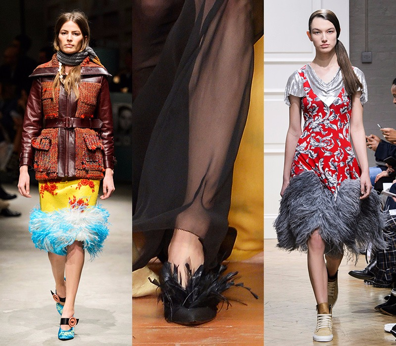 Feather trend
