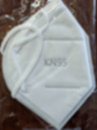 KN-95 Disposable Protective Mask.jpg