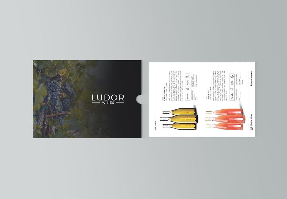 Ludor-Flat Postcard Mockup.jpg