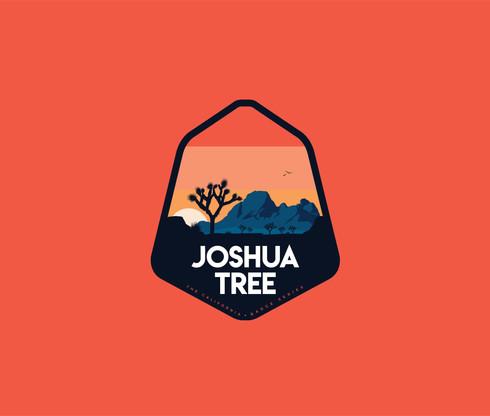 JoshuaTree-06.jpg