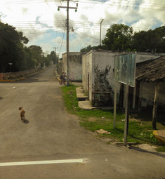 Yucatan5.jpg