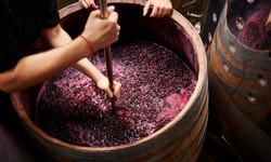 winemaking-526617659
