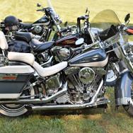 whiteseatbike.jpg