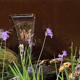 פרחי הטולבגיה על רקע מפל.jpg