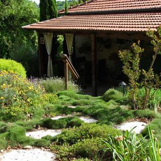 מרחב דשא טניפוליה.jpg