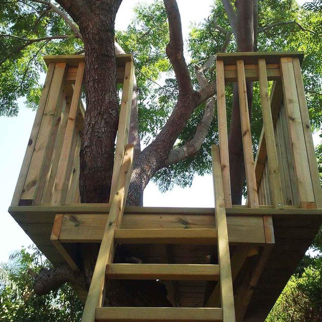 בית עץ בגובה.jpg