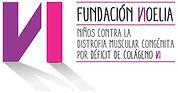 Logo fundacio Noelia.jpg