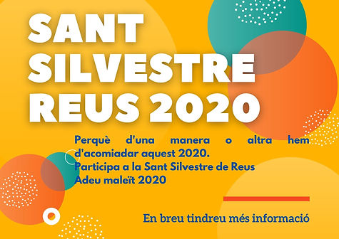 banner web sansi2020.jpg