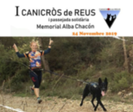canicross logo web.jpg