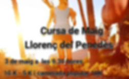 logo web cursa de maig.jpg